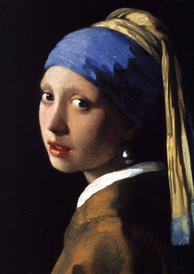 Become a friend of Vermeer